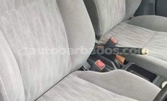 Buy Used Toyota Corolla White Car in Bridgetown in Barbados