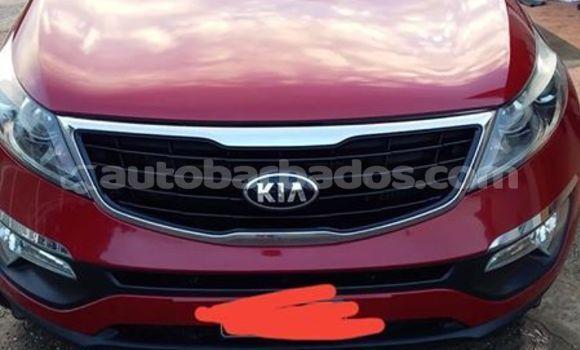 Buy Used Kia Sportage Red Car in Bridgetown in Barbados